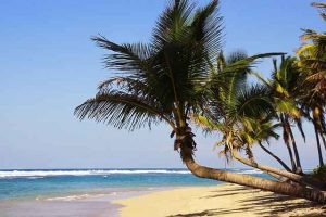 Dominican Republic beach